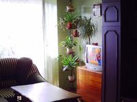 Квартиры посуточно в Евпатории, ул. Советская, 11\83, 200 грн./сутки