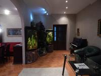 Квартиры посуточно в Львове, ул. Рудницкого , 33, 600 грн./сутки