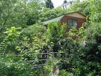 Квартиры посуточно в Ялте, ул. Музейная, 18, 600 грн./сутки
