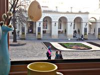 Квартиры посуточно в Львове, пл. Рынок, 29, 390 грн./сутки